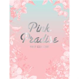 Apink - APINK 1st CONCERT 「PINK PARADISE」