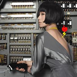 椎名林檎 - 私と放電