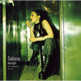 SAKURA - daylight
