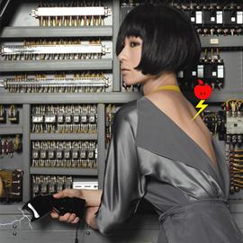 椎名林檎 - 私と放電(初回限定盤)
