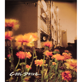 COOL DRIVE - NEW DAY