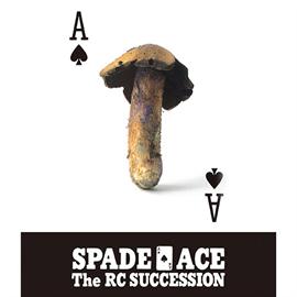 RCサクセション - スペードのエース