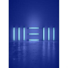 ポール・マッカートニー - NEW - コレクターズ・エディション