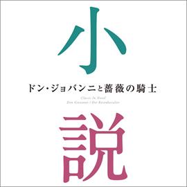 V.A. - ドン・ジョバンニと薔薇の騎士~小説に出てくるクラシック