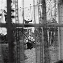 ポール・マッカートニー - ケイオス・アンド・クリエイション・イン・ザ・バックヤード~裏庭の混沌と創造