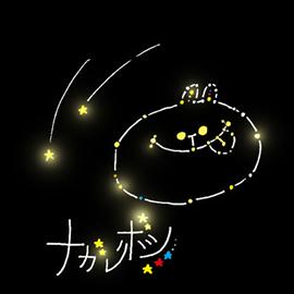 神田莉緒香 - 流れ星
