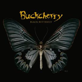 バックチェリー - ブラック・バタフライ