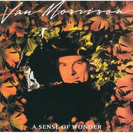 ヴァン・モリソン - センス・オブ・ワンダー+2
