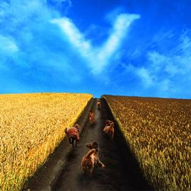 安全地帯 - 結界/田園
