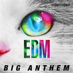 EDM -Big Anthem-