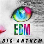 ヴァリアス・アーティスト - EDM -Big Anthem-