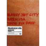 BARRACUDA~TOKYO SIX DAYS