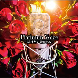 V.A. - Platinum Voice~届けたい歌がある~
