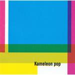 高野 寛 - Kameleon pop