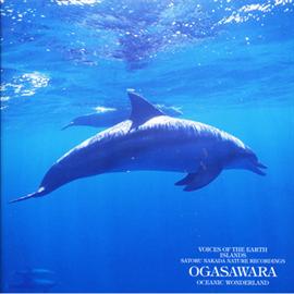 中田悟 - 自然音シリーズ 海洋の島、小笠原