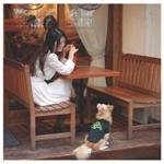 岡村靖幸 - Me-imi ~Premium Edition~