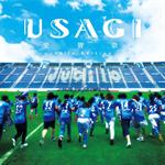 USAGI - 愛賛歌(Jubilo edition)