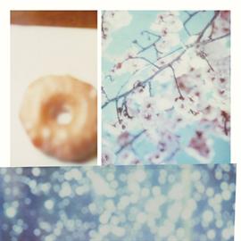 きのこ帝国 - 桜が咲く前に