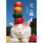 かご猫1 シロの散歩道