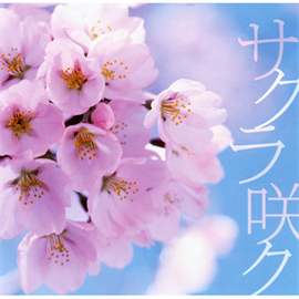 スケルト・エイト・バンビーノ - サクラ咲ク