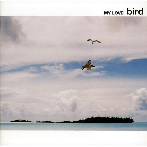 my love bird