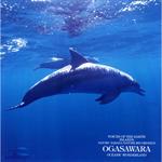 自然音シリーズ 海洋の島、小笠原